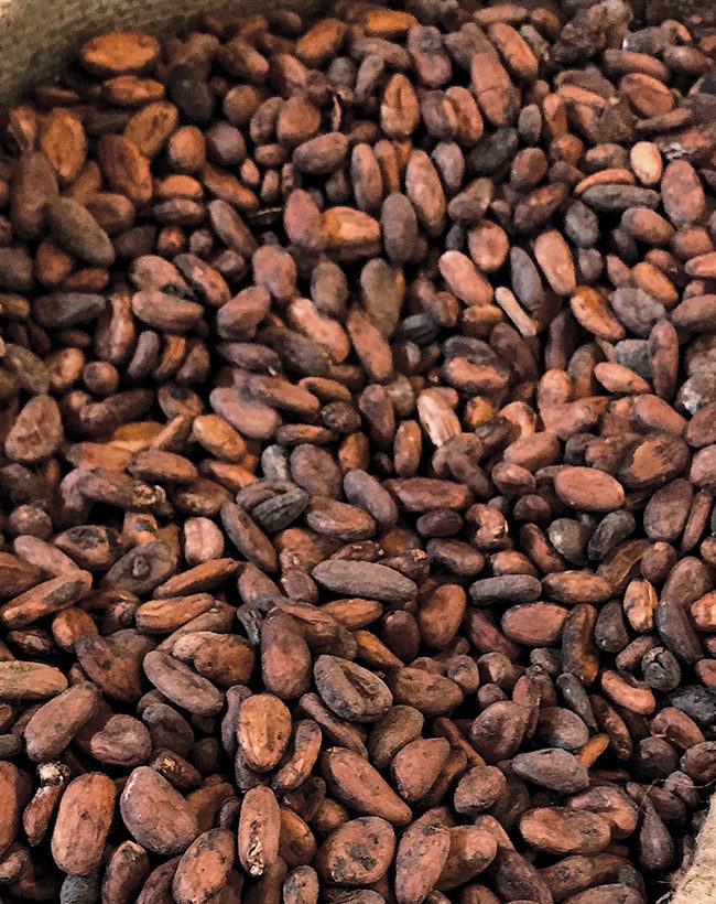 The Nigerian Cocoa Value Chain
